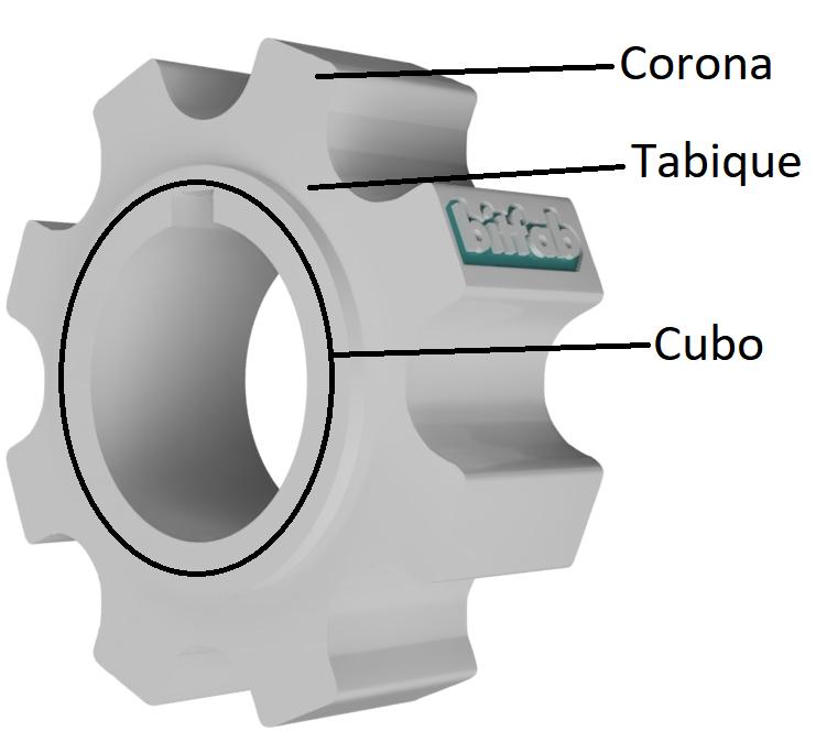 Partes de un engranaje: cubo, tabique y corona
